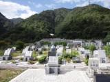 お彼岸の墓参り1