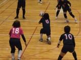 ジャパンデフバレーボールカップ徳島大会