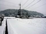 今シーズン一番の雪