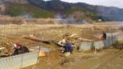 田畑の流木除去作業