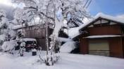 一番の大雪